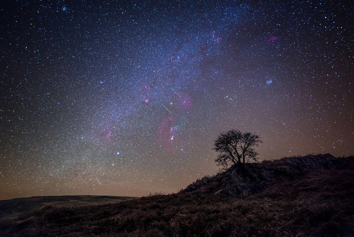 "Alyn Wallace: ""The Leonids Meteor Shower lighting up the dark skies of the Elan Valley Dark ..."