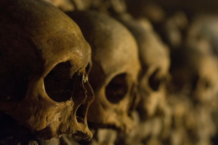 Walls built with skulls in the Les Catacombs de Paris museum. Outside of the museum, skulls ...