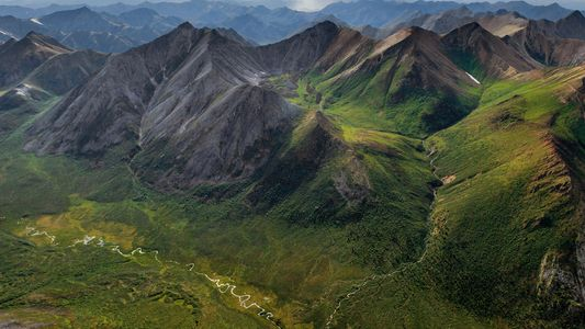 Vast Yukon Wilderness Protected in Ruling for Native Tribes