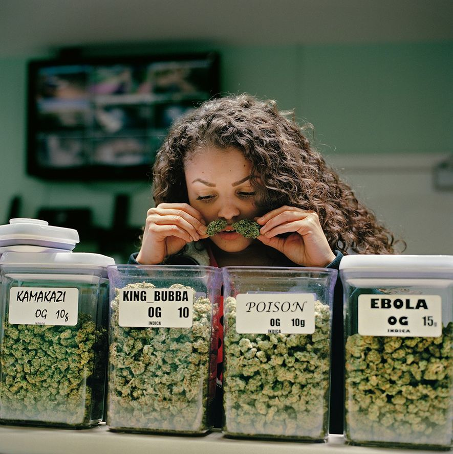 At Noho's Finest, a medical marijuana dispensary in the Los Angeles area, Damaris Diaz checks the ...