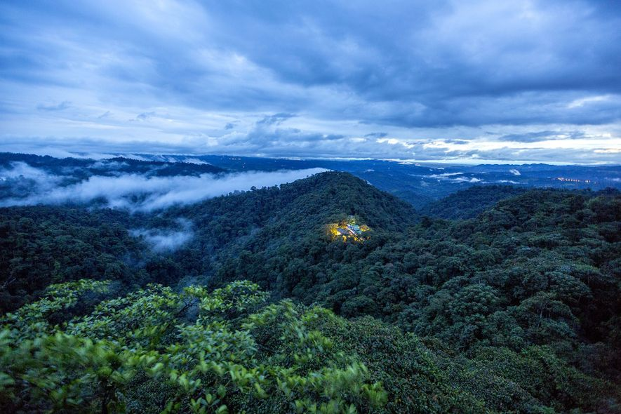 Getting up close to conservation in Ecuador's Chocó rainforest