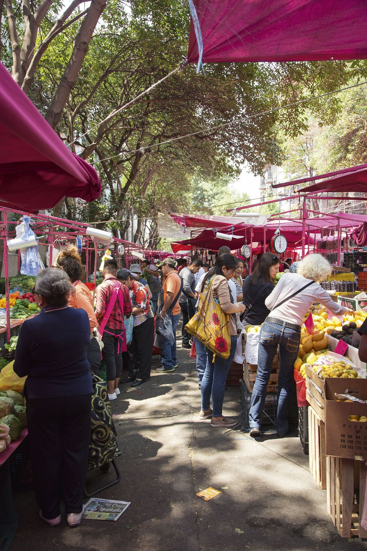 Fruit and veg stalls at the Tuesdays-only tianguis.