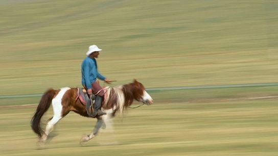 Horseman, Ulan Bator, Mongolia