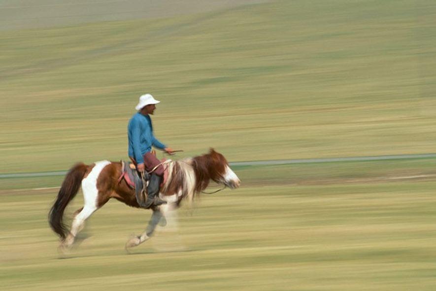 Horseman, Ulan Bator, Mongolia.