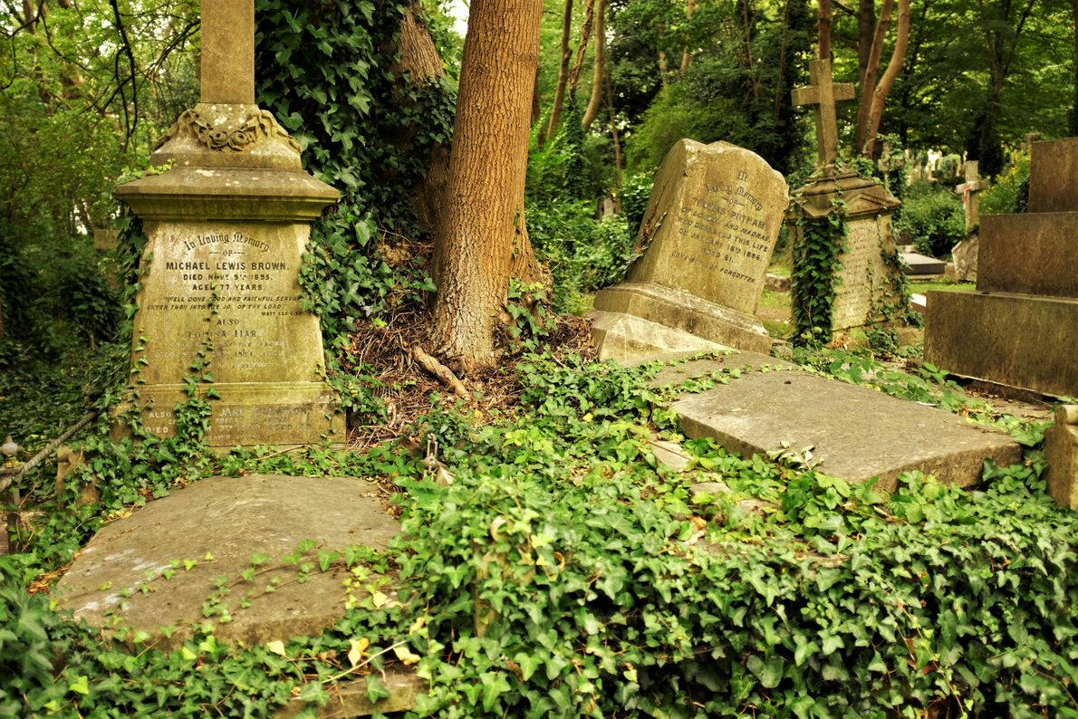 """Katie Thornton: """"A headstone appears to offer an opportunity to vie for immortality. In a cemetery, ..."""