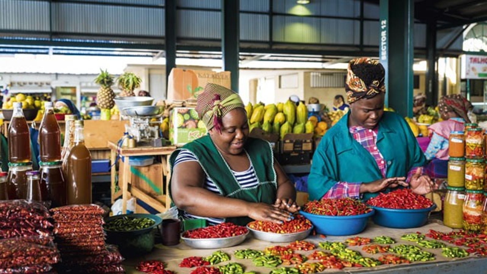 Maputo's Central Market. Image: Superstock