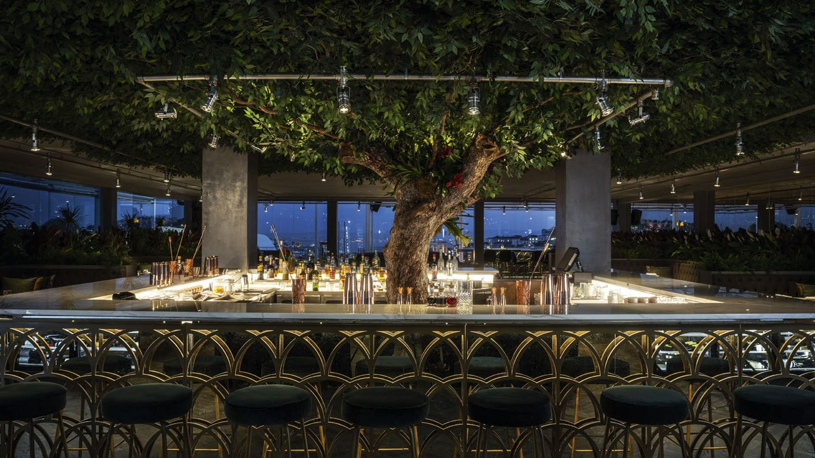 Bar with tree at centre