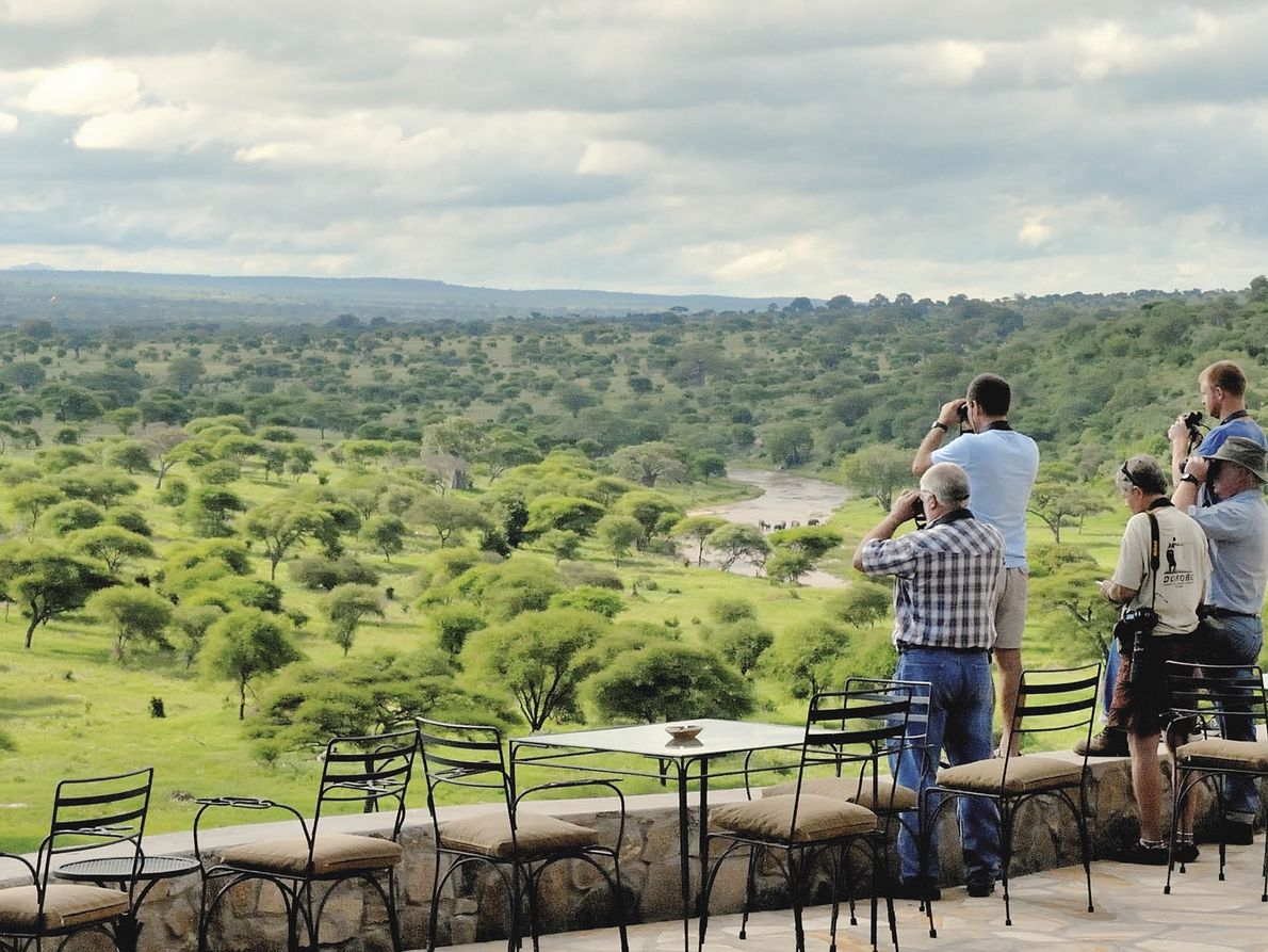 Tarangire Safari Lodge