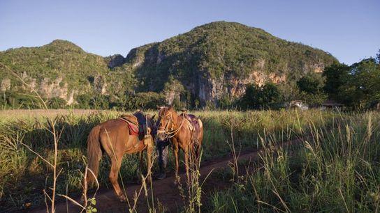 Riding in the Viñales Valley, Cuba.