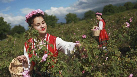 Folk costumes worn for the rose harvest