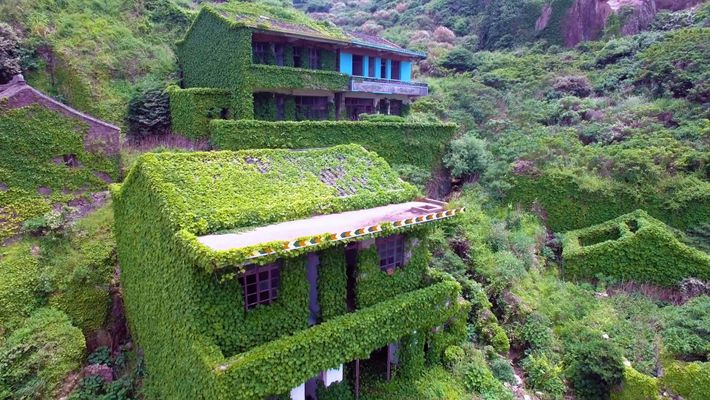 Plants Are Taking Over This Abandoned Fishing Village