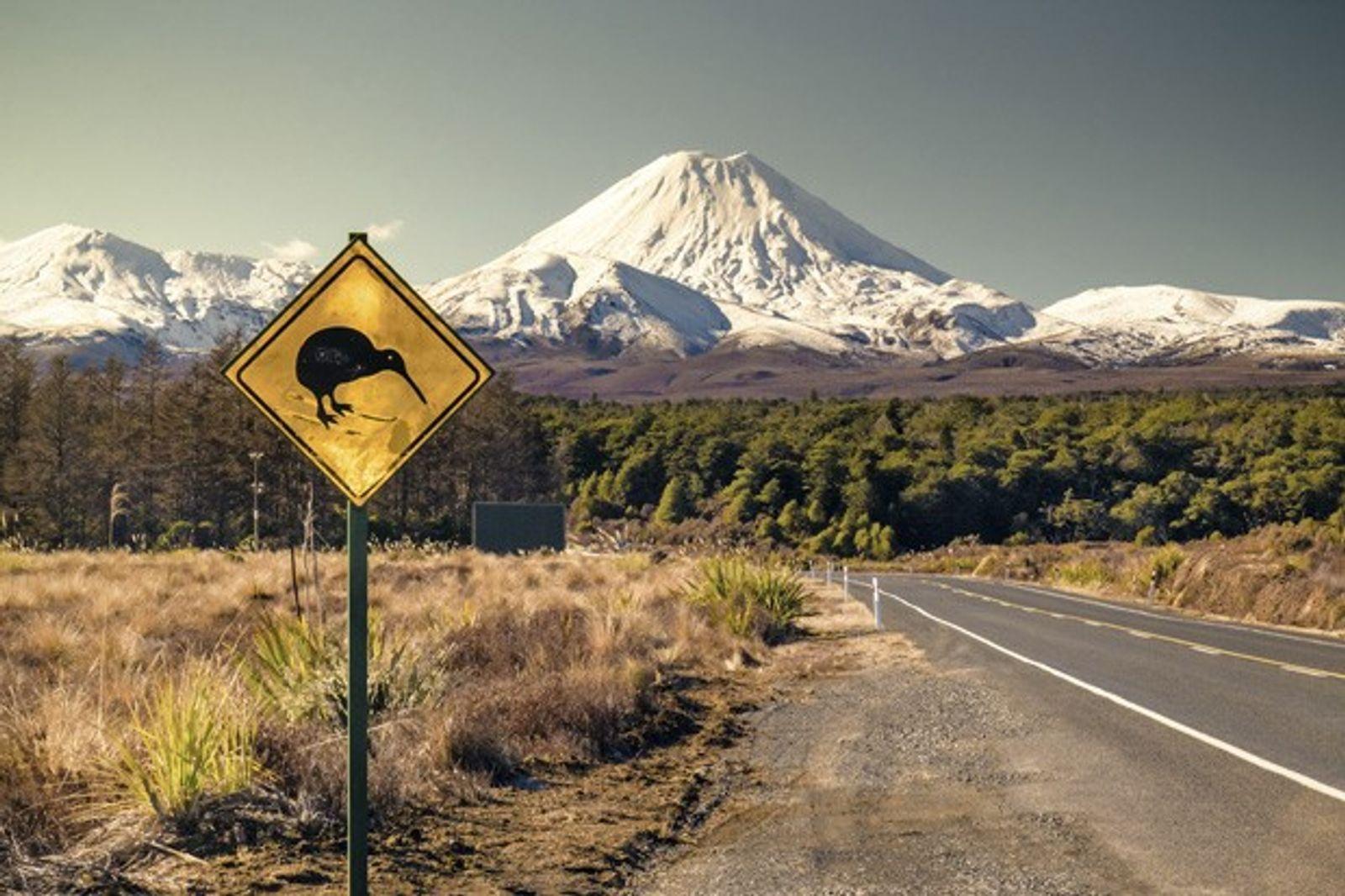 New Zealand: Lava Affair