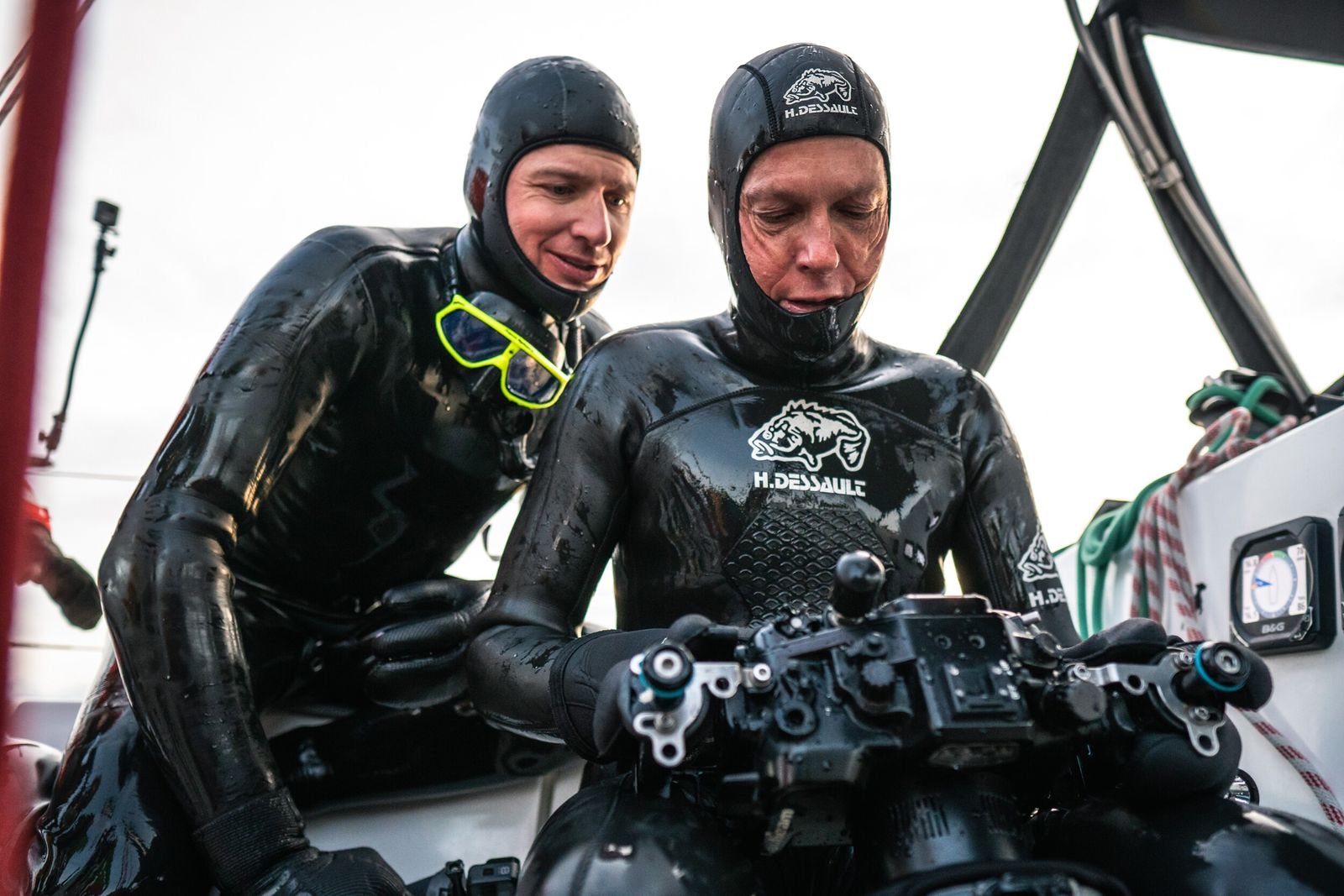 The team hopes their work studying the sperm whales at this latitude will give insight into ...