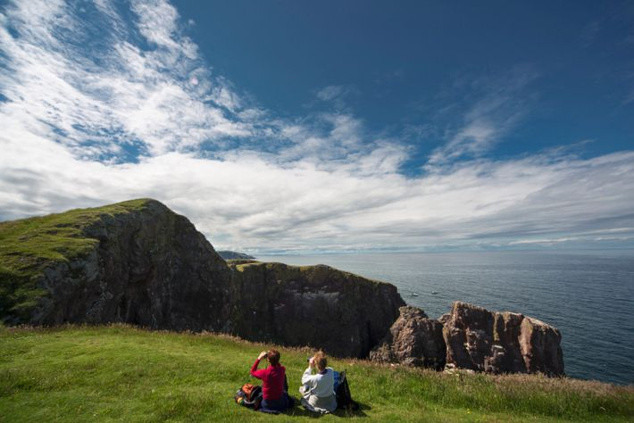 Bustling seabird colonies and vertiginous cliffs make St Abbs Head one of the most dramatic spots ...