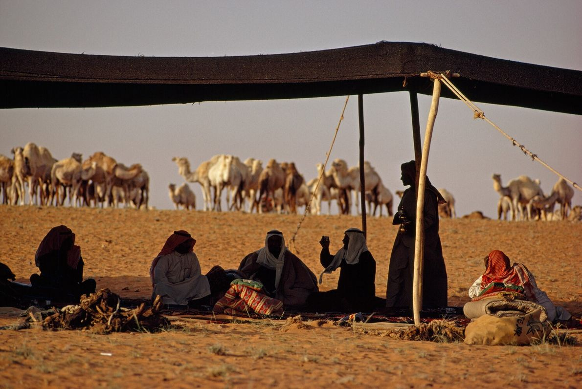 Saudi Arabia, 1972: Bedouins rest in the shade of a tent in the Nafud Desert. The ...