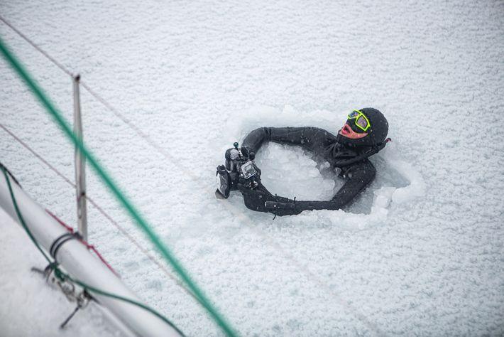 Heide breaks the surface of the frozen Trollfjorden, Lofoten.