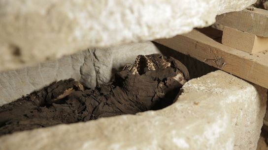 The sarcophagus and mummy unearthed at Al Minya. Return to the Nile was the first production ...