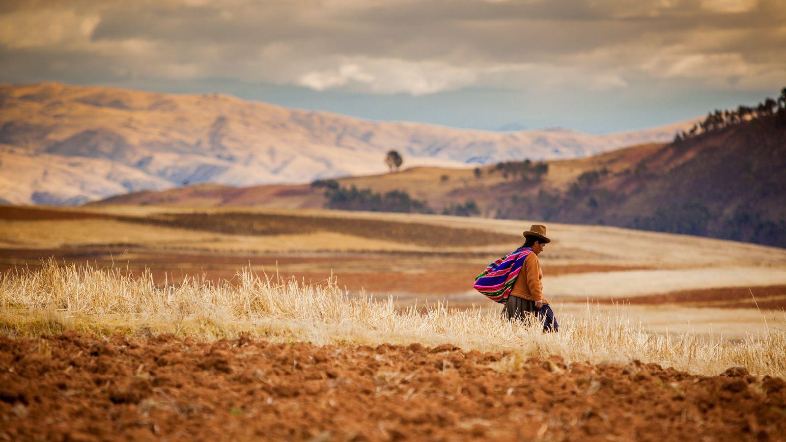 Farming in the Andes near Urubamba