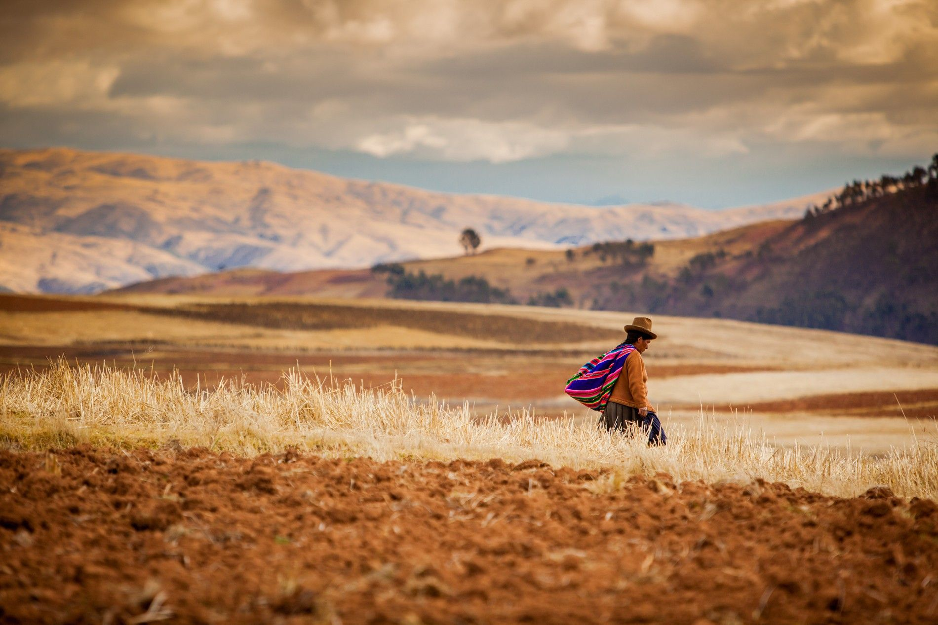 Farming in the Andes near Urubamba