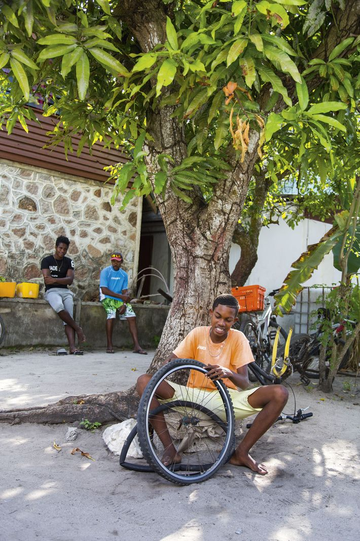 Person fixes bicycle wheel on the Seychelles island of La Digue