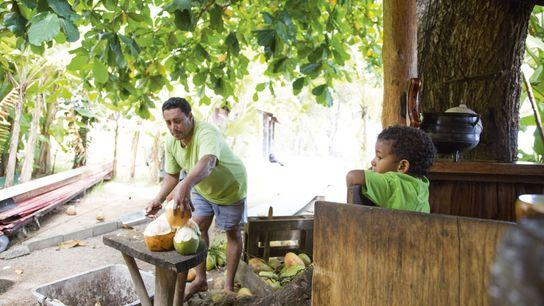 Person chops coconut on Seychelles island of La Digue