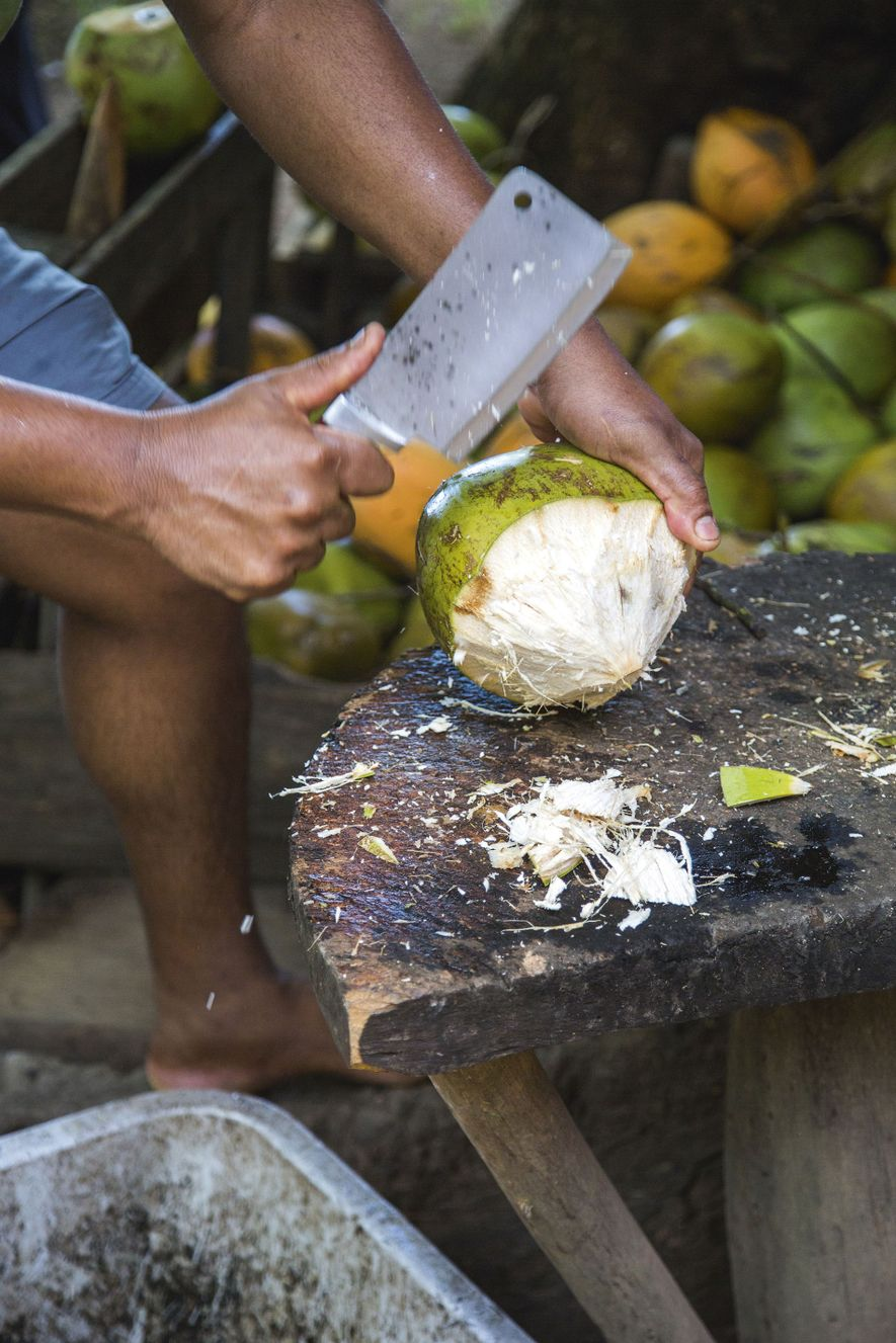 Coconut is chopped on the Seychelles island of La Digue