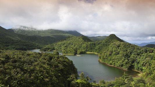 Dominica: A return to Nature Island