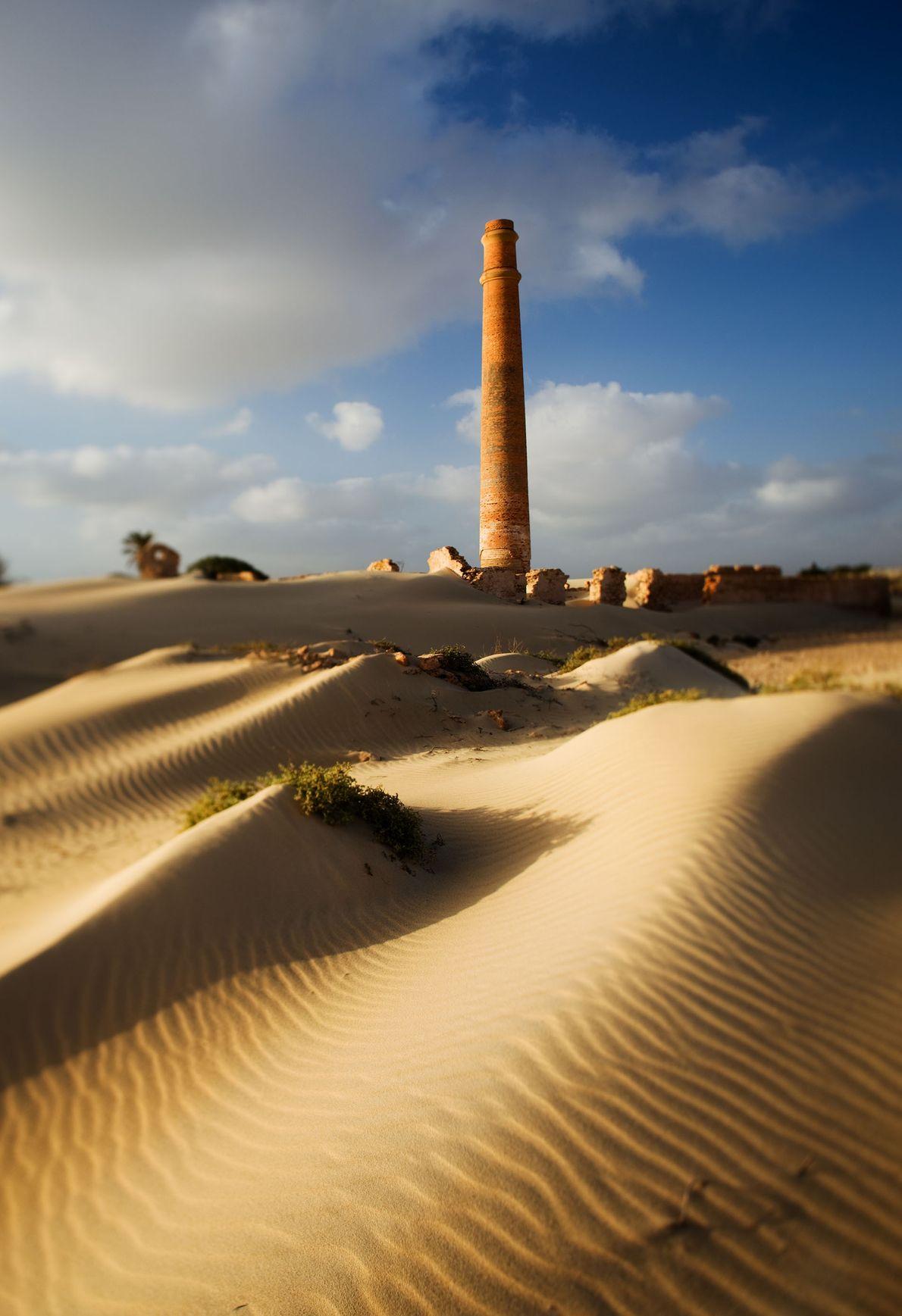 The desert.