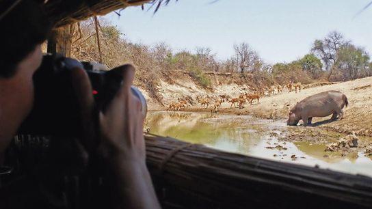 View from the Last Waterhole Hide, Zambia.