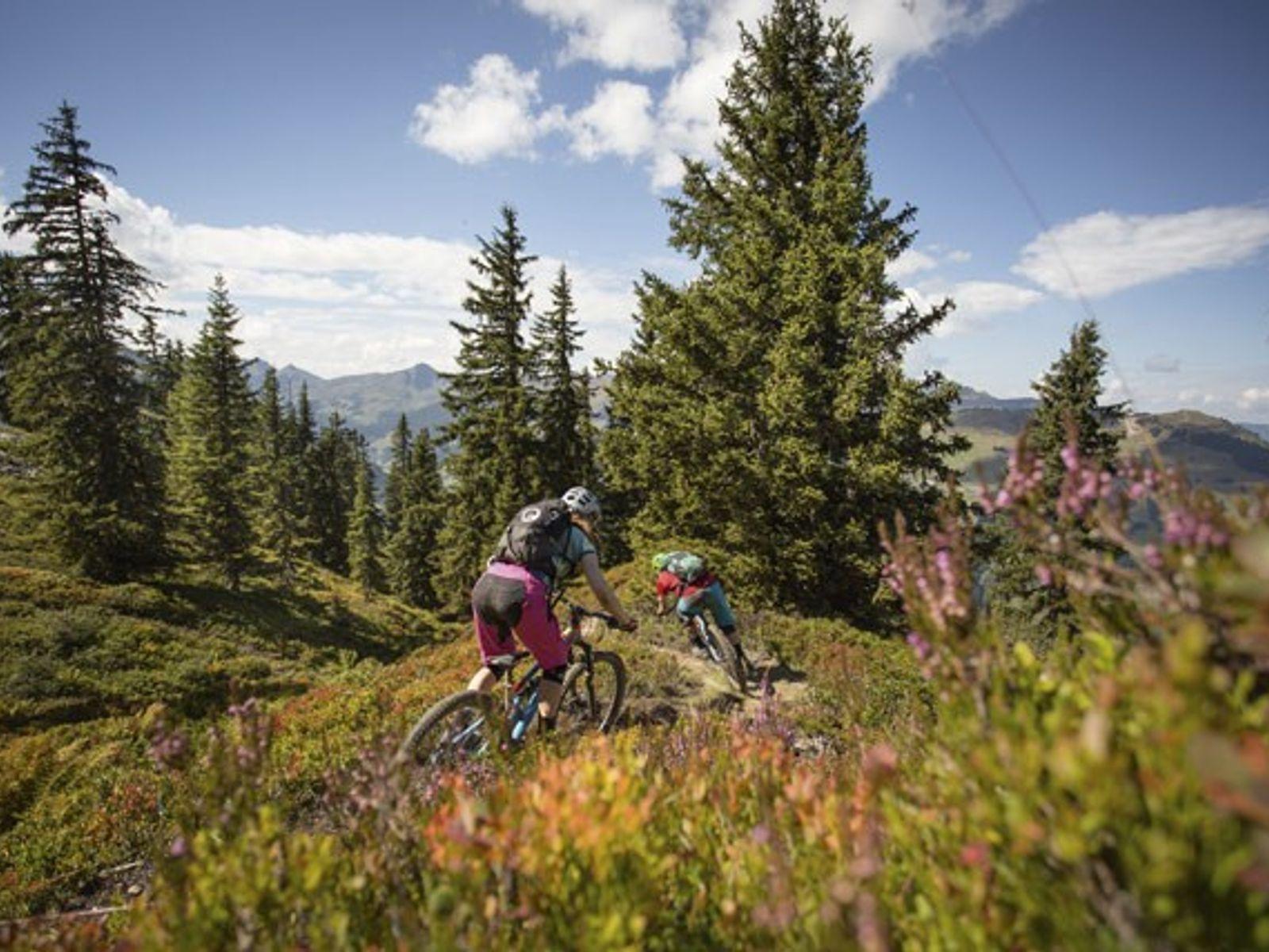 Mountain biking through Saalbach's tough terrain