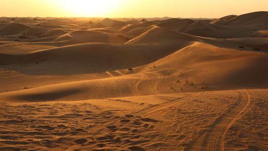 Abu Dhabi: Dune bashing
