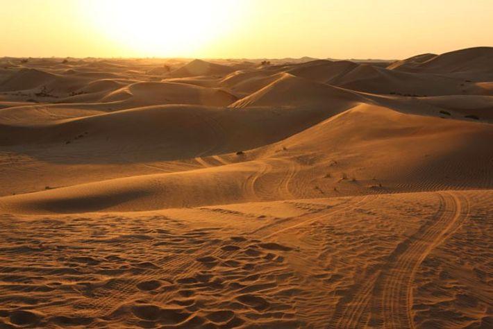 Dunes in Abu Dhabi.