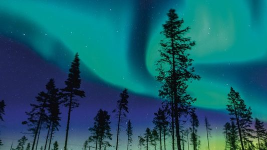 What's new: Where to see the Northern Lights