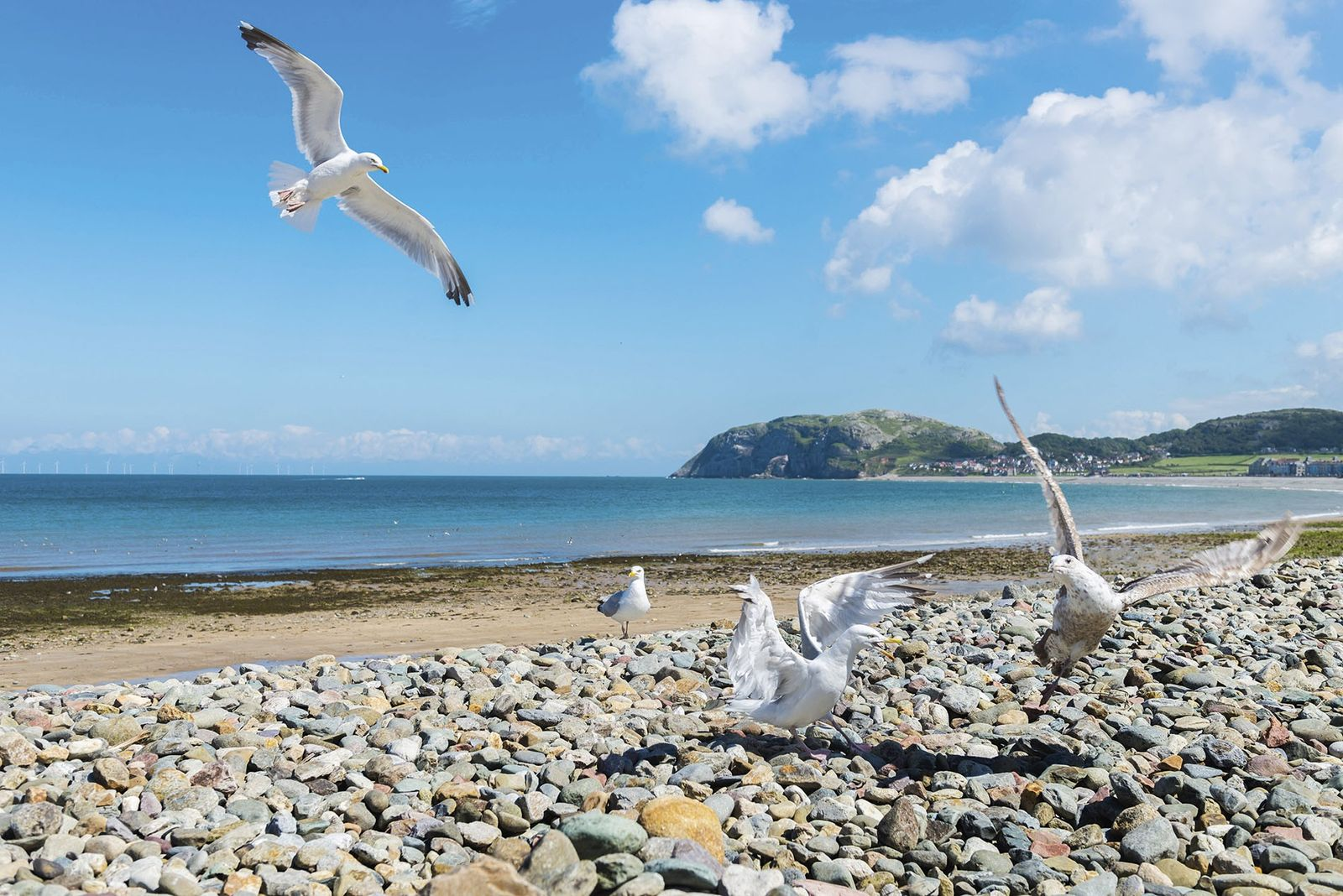 A traveller's guide to Llandudno, North Wales