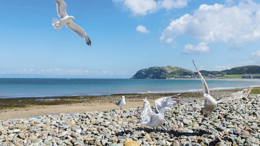 A traveller's guide to Llandudno, North Wales