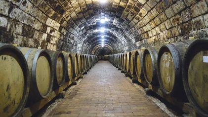 Hungarian wine: Raise a glass
