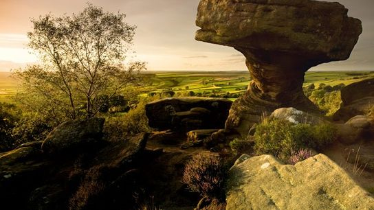 Brimham Rocks, Nidderdale Area of Outsanding Natural Beauty.