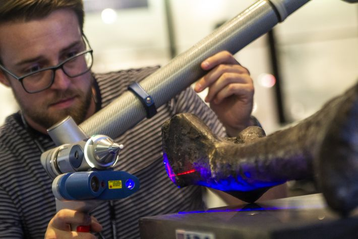 PhD student Joe Bonsor uses a 3D scanner to digitise a thigh bone. Care must be ...