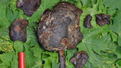 Mystery of 8,000-Year-Old Impaled Human Heads