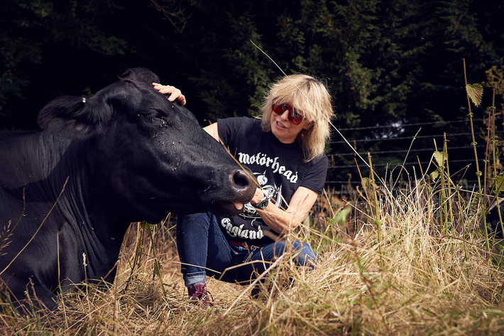 Ahimsa farming is about taking cows out of giant warehouses and putting them back on the ...