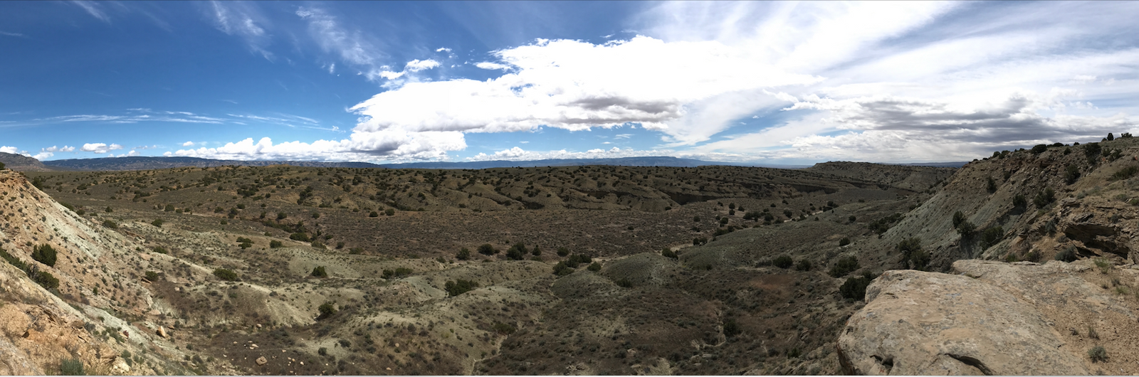 The view from the Wyoming dig site. This region was, during the Jurassic Period, a fertile ...