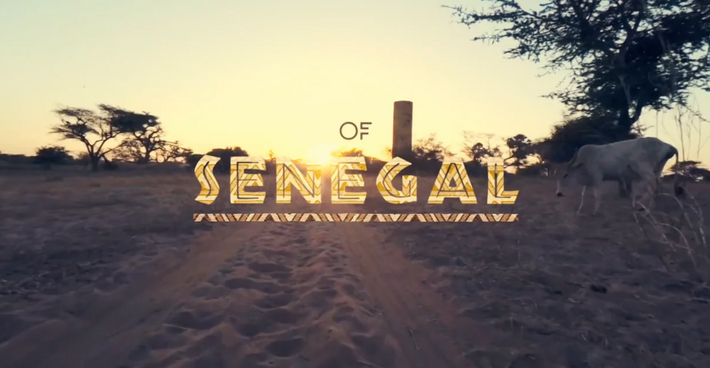 Video: Feel the Sounds of Senegal