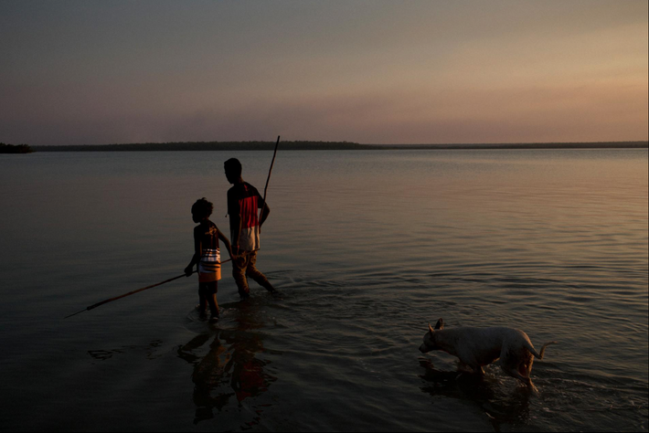 Young hunters scour the waters off of Pirlangimpi on Melville Island. Fish, shark, stingray, mud crab, ...