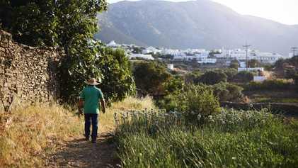 Sifnos: Greece's gourmet island