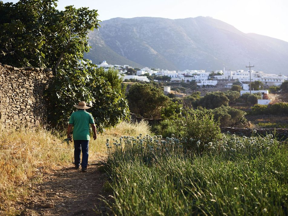 Photo gallery: Sifnos, Greece's gourmet island