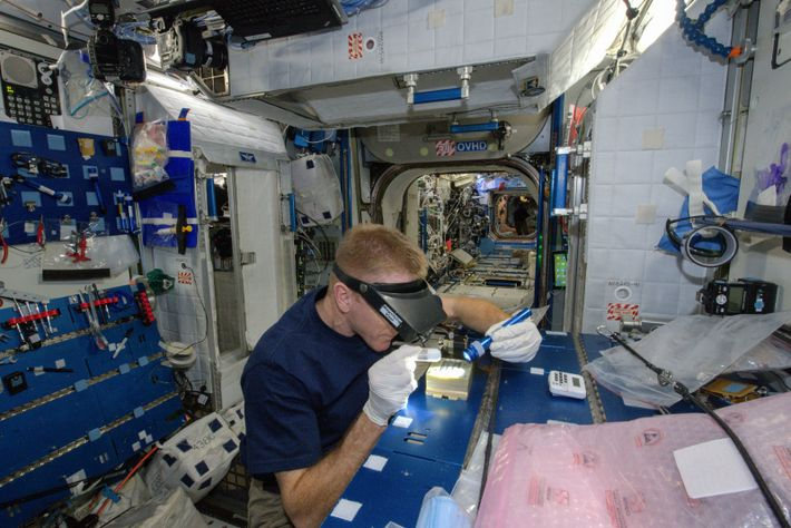 Astronauts need to be prepared for a lengthy spell in confined, sterile conditions on board the ...