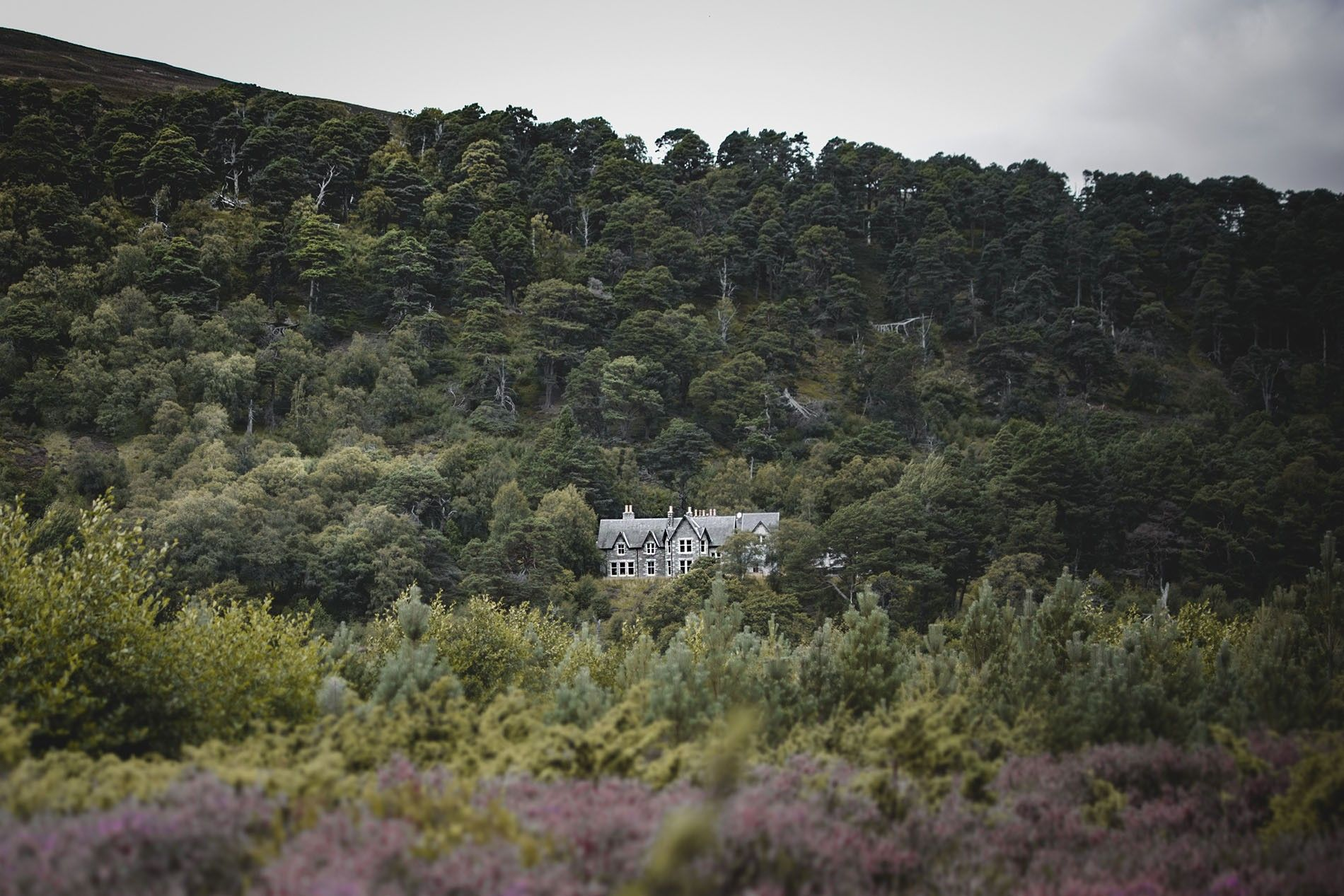Away from the Ordinary destination Glenfeshie Estate, Cairngorm National Park