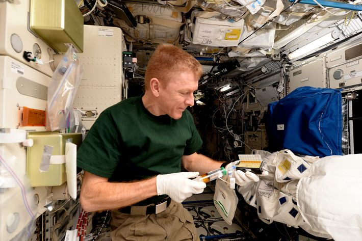 Scientific and technical skills are vital for astronauts to conduct experiments in space. Here, Tim Peake ...