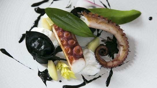 Octopus with nduja tortellini and burrata