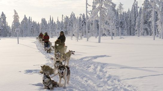 Things to do before 13: Husky Sledding in Finland.